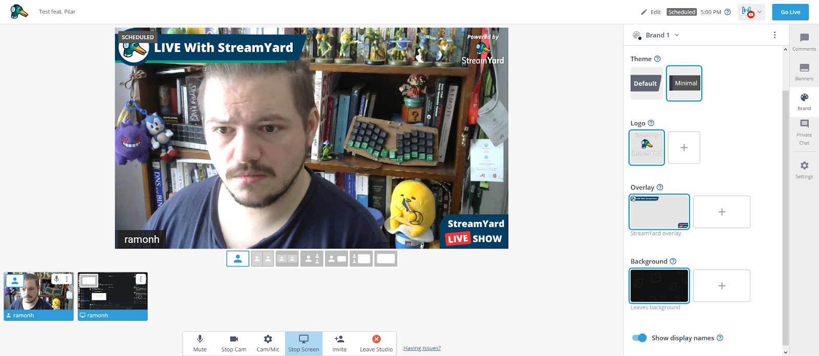 Screenshot of me broadcasting myself on StreamYard